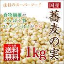 国産 そばの実 1kg 北海道産 ソバの実