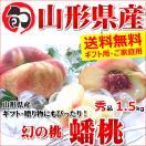 幻の桃 蟠桃(ばんとう) 1.5kg 秀品 約10玉...