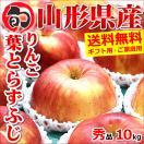 お歳暮 御歳暮 2017 フルーツ りんご 葉とらずりんご 10kg 秀品 山形県産 リンゴ 果物 ギフト 贈り物 贈答 送料無料 お取り寄せ