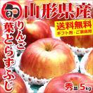 お歳暮 御歳暮 2017 フルーツ りんご 葉とらずりんご 5kg 秀品 山形県産 リンゴ 果物 ギフト 贈り物 贈答 送料無料 お取り寄せ
