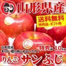 お歳暮 御歳暮 2017 フルーツ りんご サンふじ 特秀品 10kg 山形県産 リンゴ 果物 ギフト 贈り物 贈答 送料無料 お取り寄せ