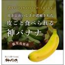 バナナパンケーキ(鉄腕ダッシュで紹介)のレシピ