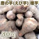 野菜・種/苗 唐の芋/とうのいも(えび芋・里芋) 種芋・生もの種 量り売り500g