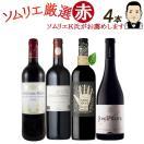 ワイン ワインセット ソムリエおすすめ お手頃チョイス 赤ワイン バラエティ 4本セット 送料無料