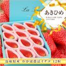いちご あきひめ わかば農法 鳥取県産 デラックス フルーツキャップ詰 12粒 代引き不可 イチゴ 苺 お取り寄せ お土産 ギフト ホワイトデー