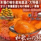 産地直送 和歌山の柿 約7.5kg 和歌山県産 ...