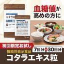 血糖値 サプリ サプリメント コタラヒム サラシア コタラエキス粒(30日分+7日分) 機能性表示食品