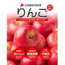 北海道余市産 りんご 3kg 訳あり品 品種 昂林 こうりん 送料無料