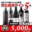 赤ワインセット W金賞入り 現役ソムリエの売れ筋赤ワイン5本セット 第7弾 送料無料 wine set