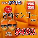 宮崎県産『訳あり宮崎マンゴー』2kg(3~6玉) 発送時期:5月下旬~6月下旬