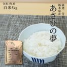 お米 5kg 栃木県 白米 一等米 あさひの夢 平成29年産 送料無料