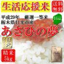 お米 5kg 栃木県日光市産 白米 一等米 あさひの夢 平成29年産 送料無料