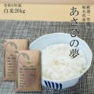 お米 20kg 栃木県 白米 一等米 あさひの夢 平成29年産 送料無料