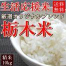 お米 10kg 栃木県産ブレンド米 白米 送料無料