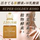 酵素 GOLDEN ENZYME 黄金酵素×200億個Wナ...