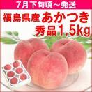 もも 桃 7月下旬頃から発送・福島県飯坂町産「あかつき」 秀品1,4kg(4〜7個)