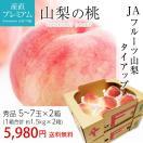 お取り寄せグルメ 桃 フルーツ 秀品 3kg 1.5kg(5~7玉)×2箱 家庭用 JAフルーツ山梨 東雲支所 産地直送 もも モモ 送料無料