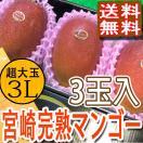 宮崎県産 完熟マンゴー 特大3L3玉 化粧箱入り 送料無料 お中元 贈答用 訳あり品ではございません