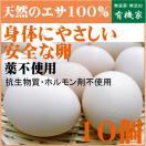 美味しいプリプリ卵 小林養鶏農園の特鶏卵  10個 抗生物質・ホルモン剤不使用 身体にやさしい安全な卵