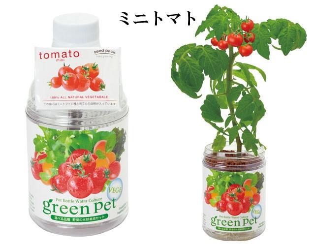 『栽培セット』 育てるグリーンペットベジ1