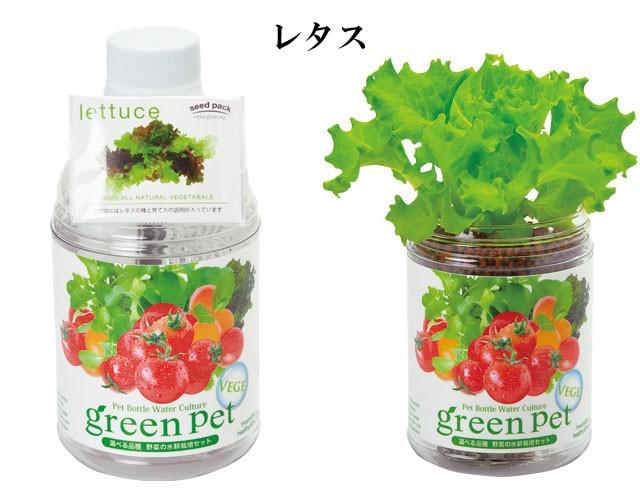 『栽培セット』 育てるグリーンペットベジ2