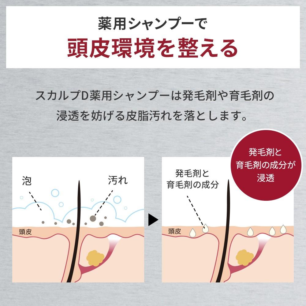 アンファー スカルプD 薬用スカルプシャンプーオイリー (脂性肌用)の商品画像 2