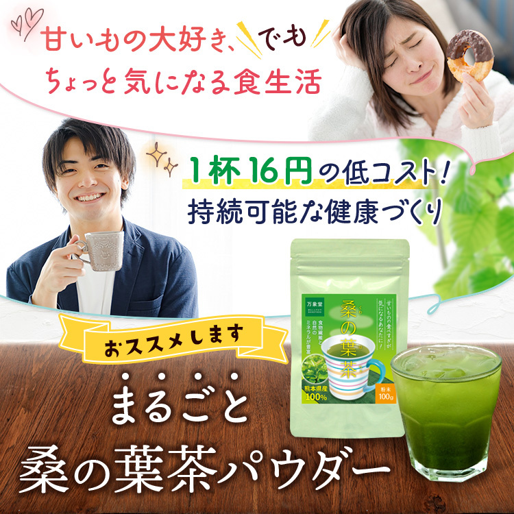 万象堂 桑の葉茶 熊本産 粉末 100g× 1個の商品画像|2