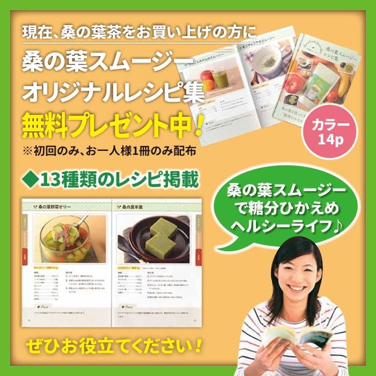 万象堂 桑の葉茶 熊本産 粉末 100g× 1個の商品画像|4