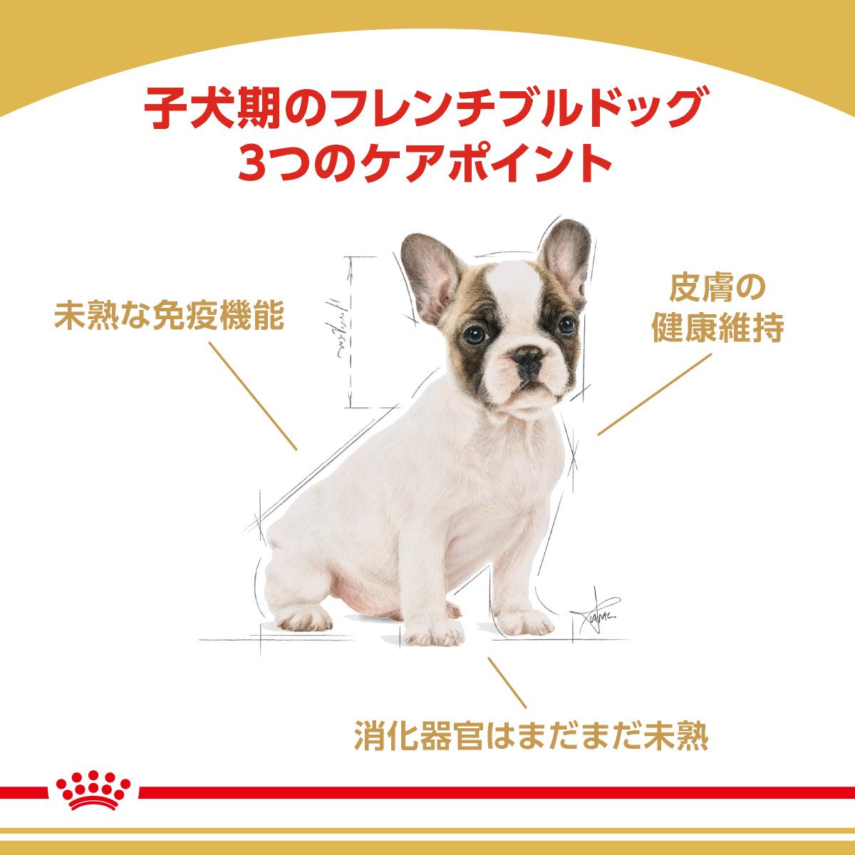 ブリード ヘルスニュートリション フレンチブルドッグ 子犬用 3kg×4個の商品画像|2