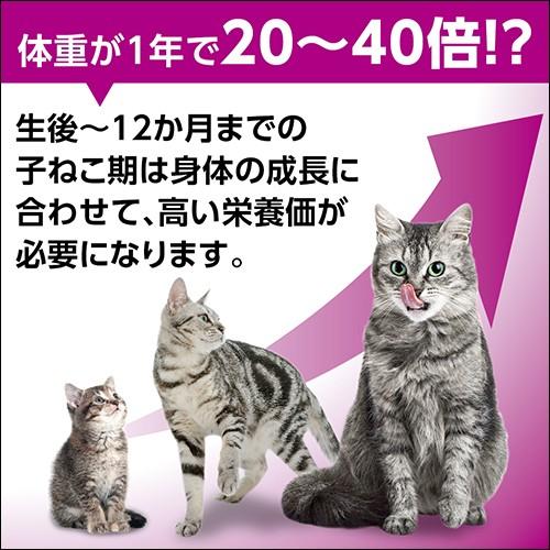 マースジャパン カルカン パウチ 12カ月までの子ねこ用 しらす入り まぐろ ゼリー仕立て 70gの商品画像|2