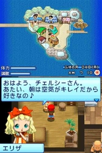 【DS】 牧場物語 キラキラ太陽となかまたちの商品画像|4