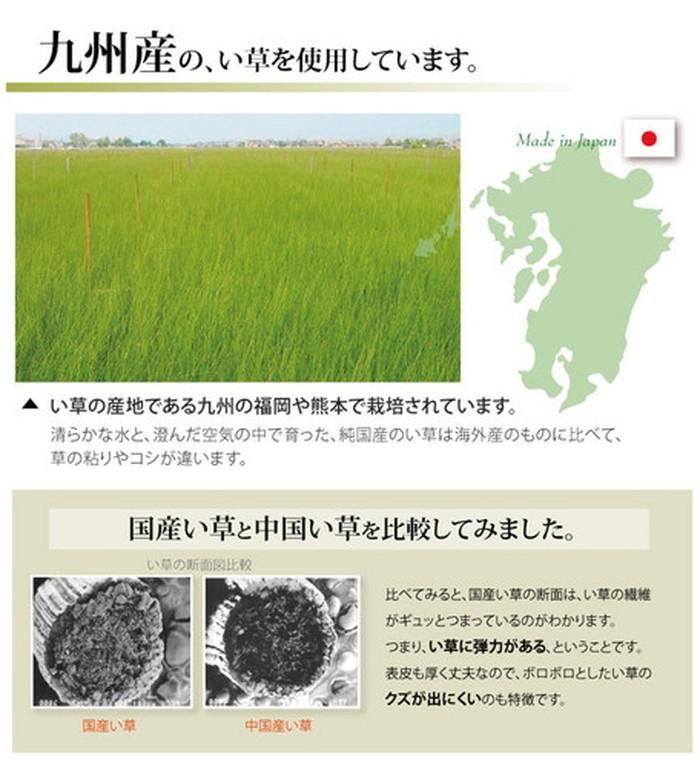 イケヒコ い草上敷き 湯沢 本間8畳の商品画像 4