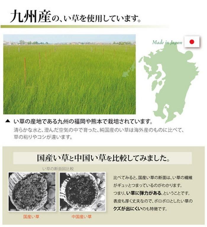 イケヒコ い草上敷き 松 団地間8畳の商品画像|4