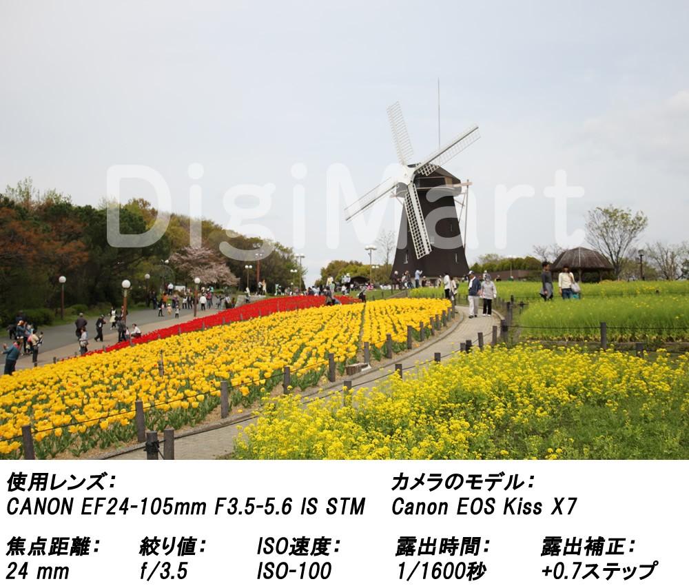 キヤノン EFレンズ EF24-105mm F3.5-5.6 IS STMの商品画像|3