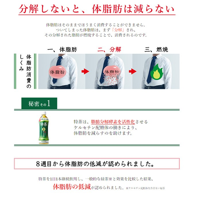 サントリー緑茶 伊右衛門 特茶 1000ml × 12本 ペットボトルの商品画像|2