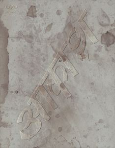 椎名林檎と彼奴等の居る真空地帯 【DVD】
