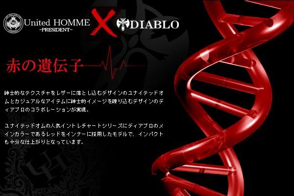コインケース メンズ DIABLO(ディアブロ)×United HOMME(ユナイテッドオム) 馬革 牛革 メッシュ BOX型 小銭入れ