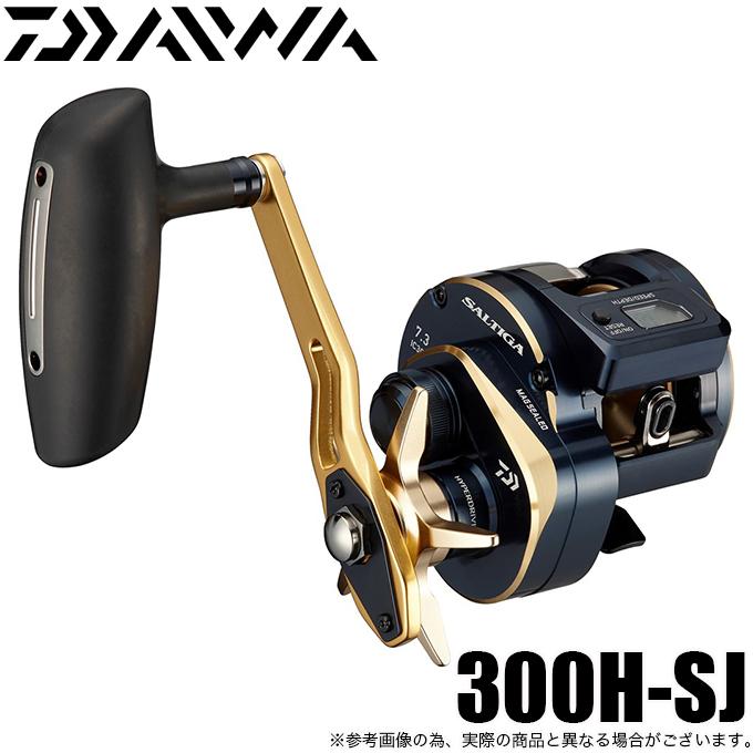21 ソルティガIC 300H-SJの商品画像|ナビ