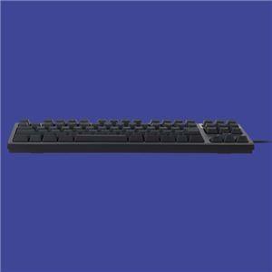 REALFORCE TKL SA R2TLSA-JP3-BK (ブラック)の商品画像|3