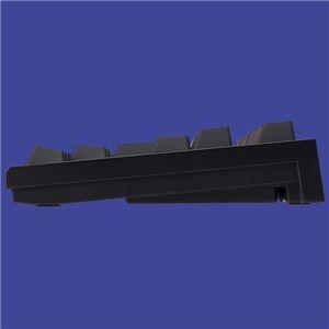 REALFORCE TKL SA R2TLSA-JP3-BK (ブラック)の商品画像|4