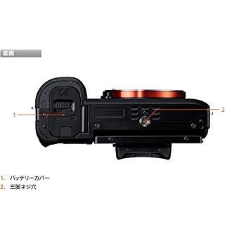 ソニー アルファ α7 ボディ ILCE-7の商品画像|3
