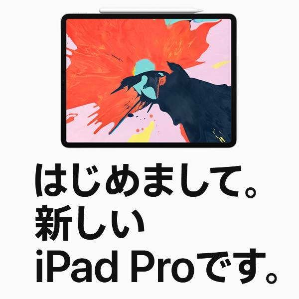 Apple iPad Pro 12.9インチ Wi-Fi 64GB スペースグレイ 2018年モデルの商品画像|2