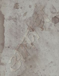 椎名林檎と彼奴等の居る真空地帯 【Blu-ray】