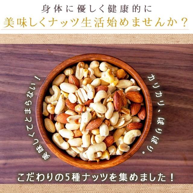 巌流庵のミックスナッツ 5種 塩味 有塩 大粒 500g (アーモンド、カシューナッツ、ジャイアントコーン、バターピーナッツ、珍豆)の商品画像 ナビ