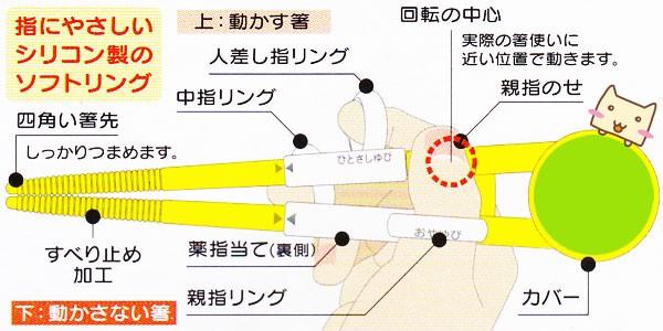 デラックストレーニング箸 お箸の構造
