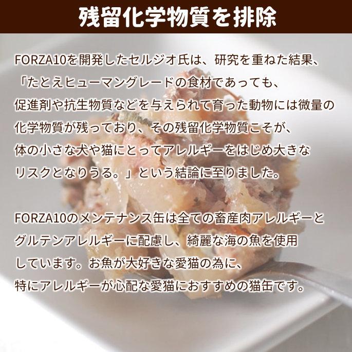 フォルツァディエチ/FORZA10 メンテナンス イワシ&エビ 85g×1個の商品画像|2