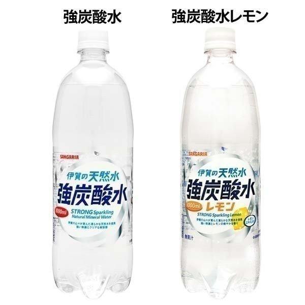 水 ペットボトル 1000ml 1L 24本 伊賀の天然水 強炭酸水 サンガリア (D)