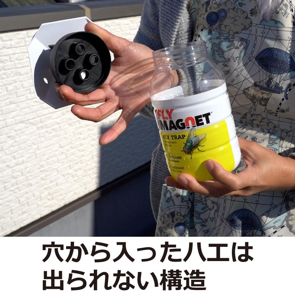 フライマグネット 誘引剤1袋付き × 1の商品画像 2