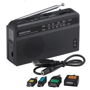 Audio Comm 手回し発電ラジオライト RAD-V945N