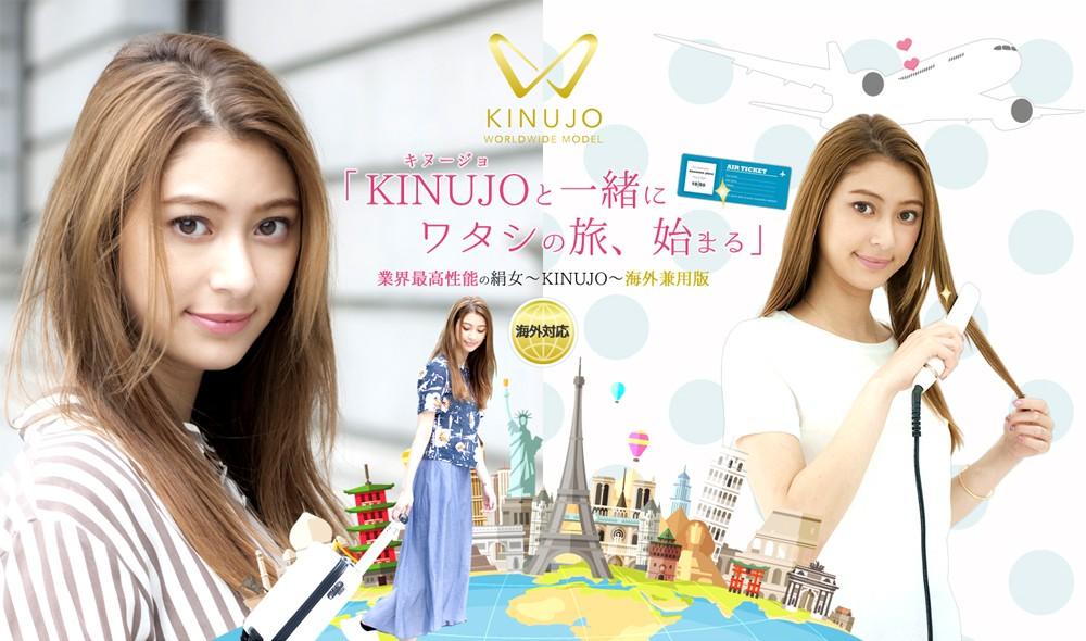 海外対応ストレートアイロン KINUJO W DS100の商品画像|2